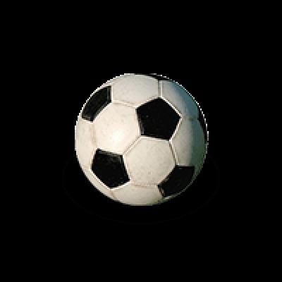 Eintracht Braunschweig Bettw/äsche Logo